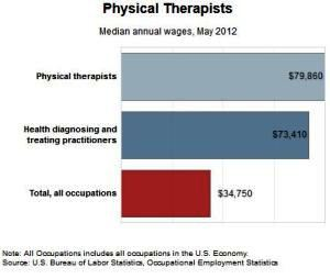 physical therapists what do they earn